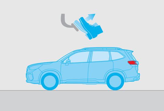 Auto Vehicle Hold